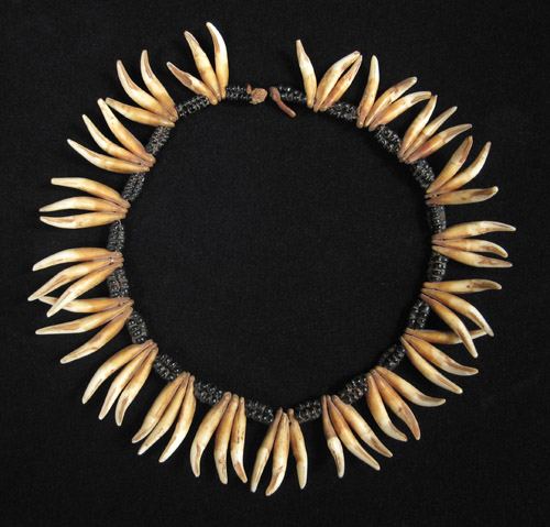 African Tribal Art - Dog's teeth necklace, South Africa