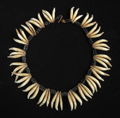 African Tribal Art - Dog's teeth necklace, South Africa, reverse