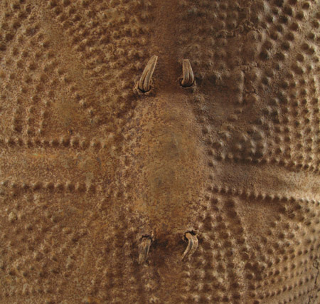 African Tribal Art - Shield, Wandala, Northern Cameroon, detail front