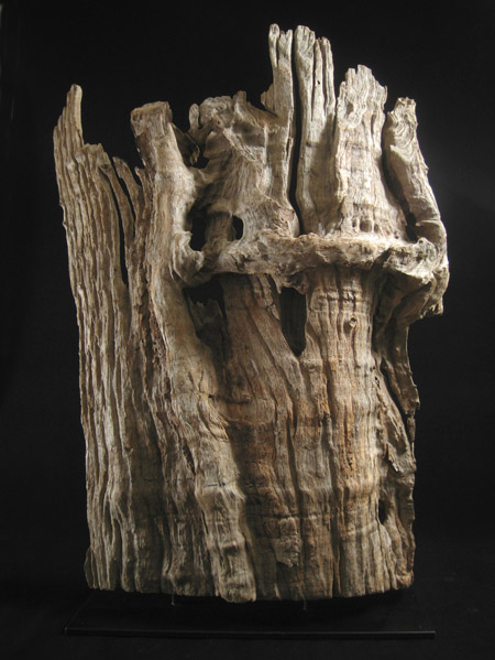 Asian Tribal Art - Scholar's wood fragment, China