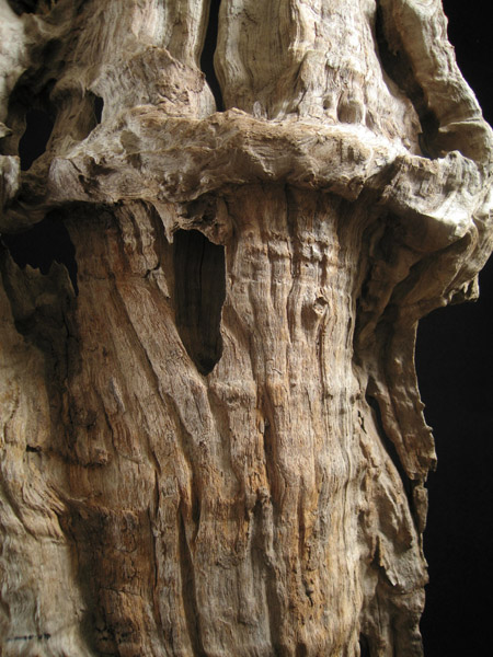 Asian Tribal Art - Scholar's wood fragment, China, detail
