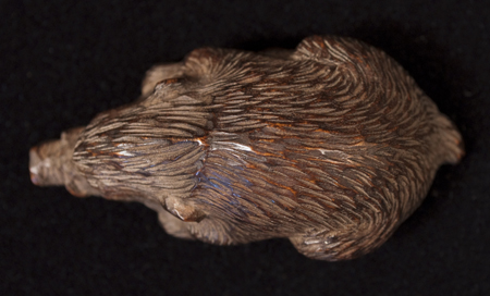 Asian Tribal Art - Boar netsuke, Japan, top view