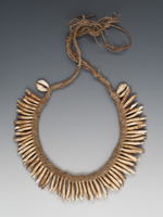 Dogs tooth necklace, PNG