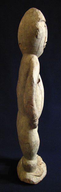 Oceanic Art - Wood female figure, Abelam (Wosera), Papua New Guinea, side view
